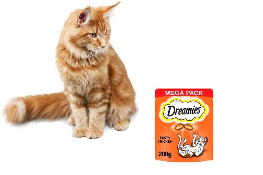 Why Do Cats Like Dreamies