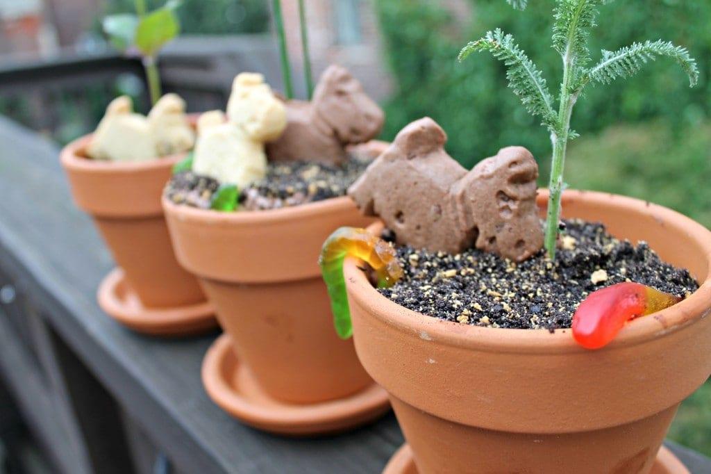 """""""Dirt"""" Flower Pots"""