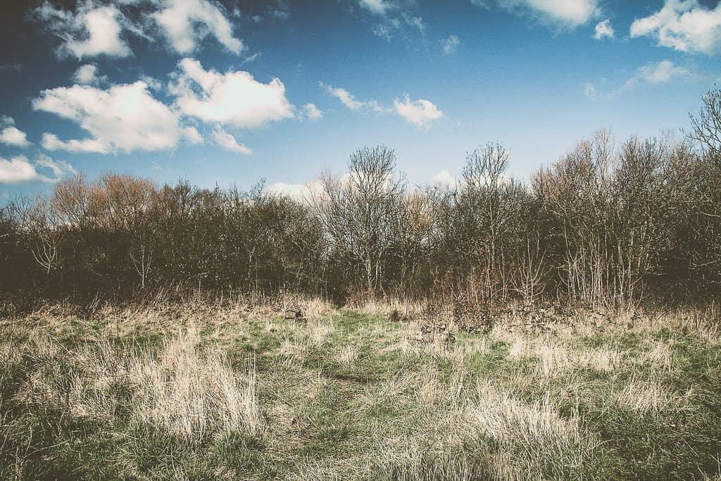 Wormwood Scrubs (Park)