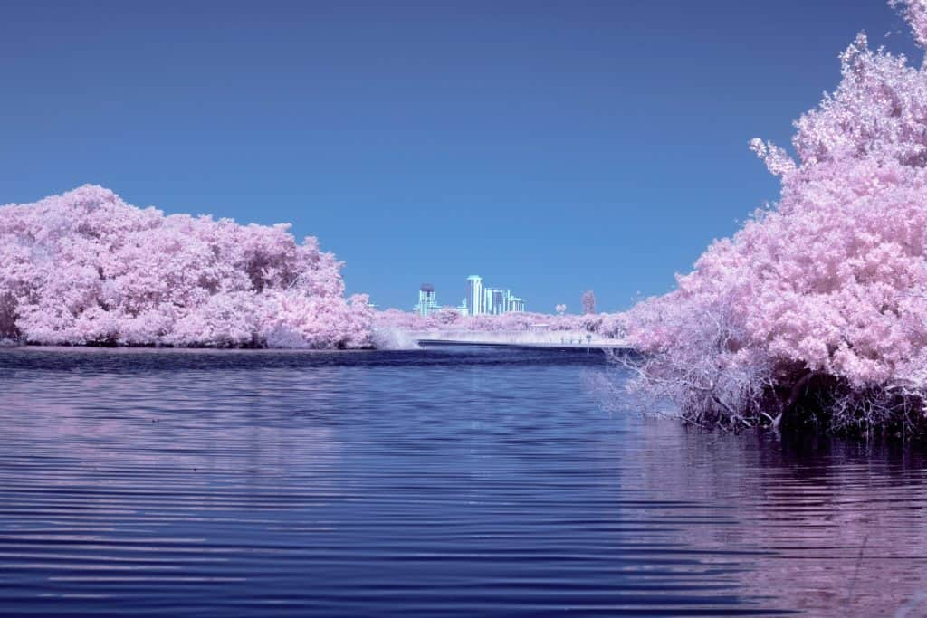 When Is The Cherry Blossom Season In Tokyo And The Best Viewing Spots 2021 Japan Truly