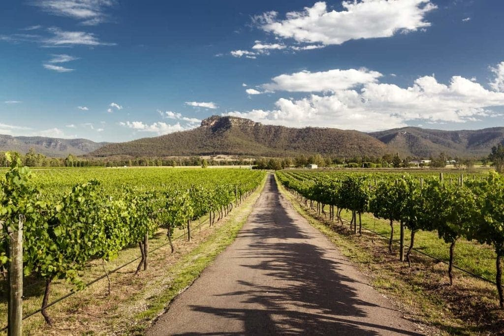 Hunter Valley day trips