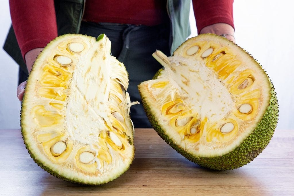 Author lifts 2 halves of split jackfruit, the largest of all exotic tropical fruits, on table