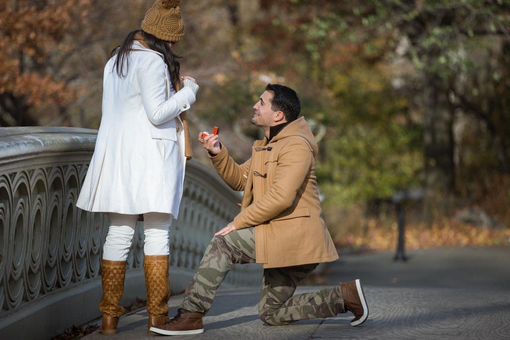 Photo Central Park Bow Bridge Proposal | VladLeto