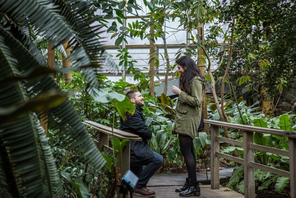 Photo Wedding Proposal in Brooklyn botanical garden | VladLeto