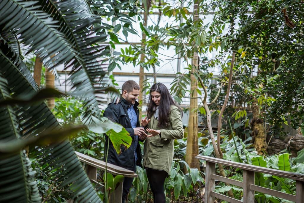 Photo 7 Wedding Proposal in Brooklyn botanical garden | VladLeto