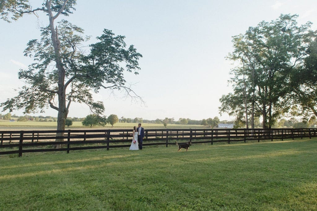midway ky horse farm wedding portrait