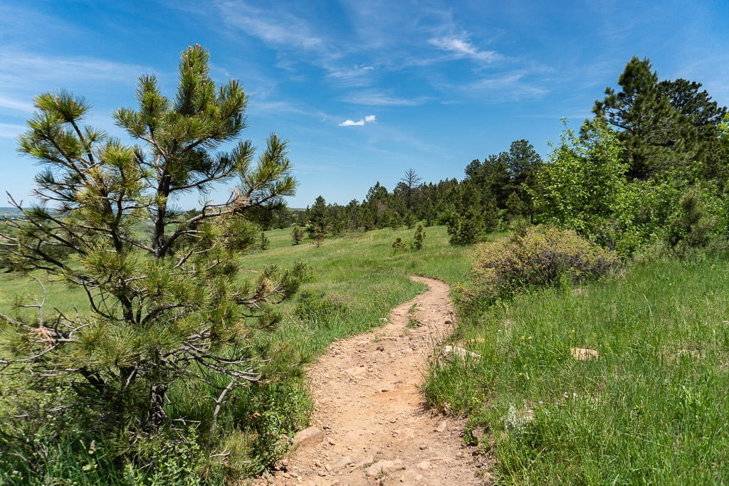 One of the many hiking trails available in Westminster