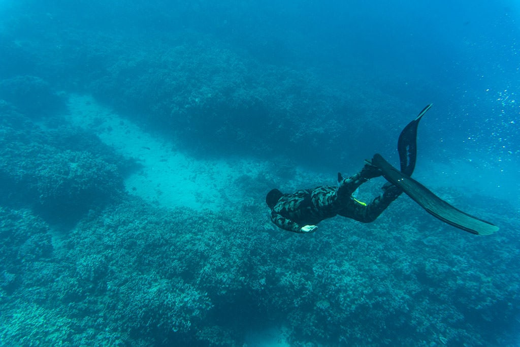freediving divemaster while snorkeling in molokai