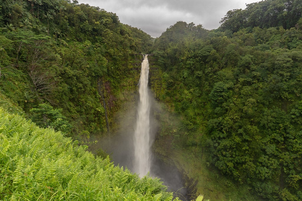 akaka falls - a top of list of things to do in Hilo on the big island hawaii