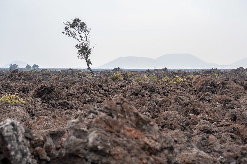 volcanic rock views from Mauna Loa Observatory Road