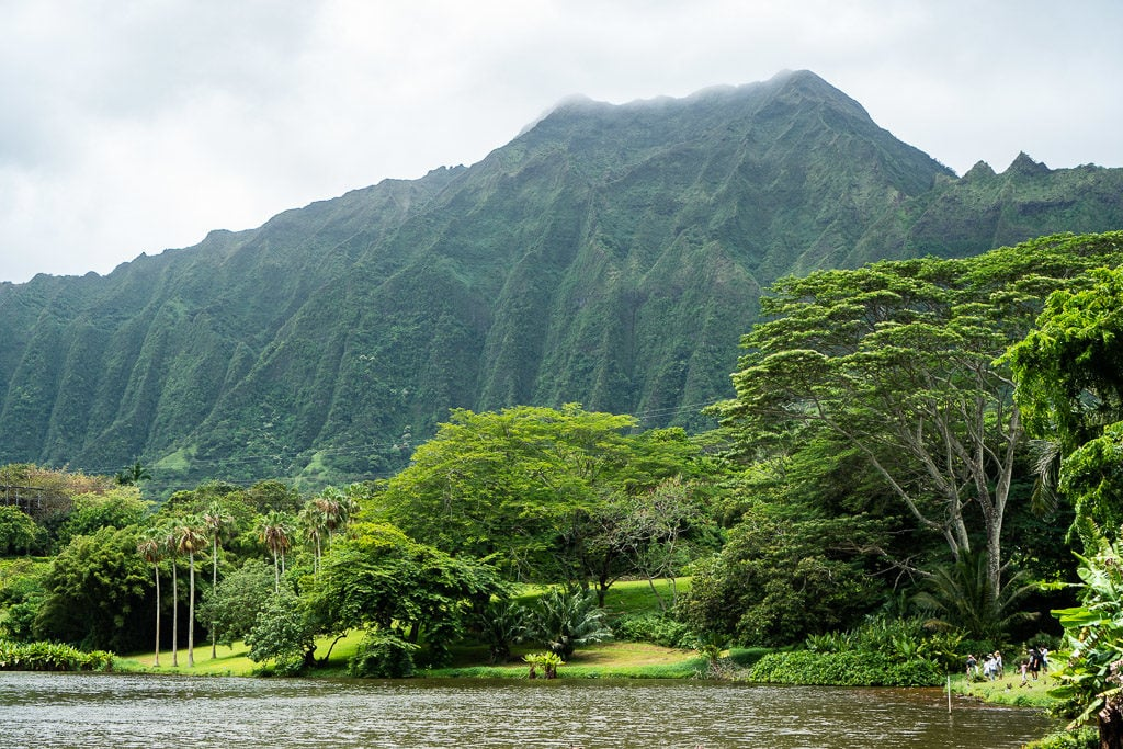 mountainside view at Ho'omaluhia Botanical Garden