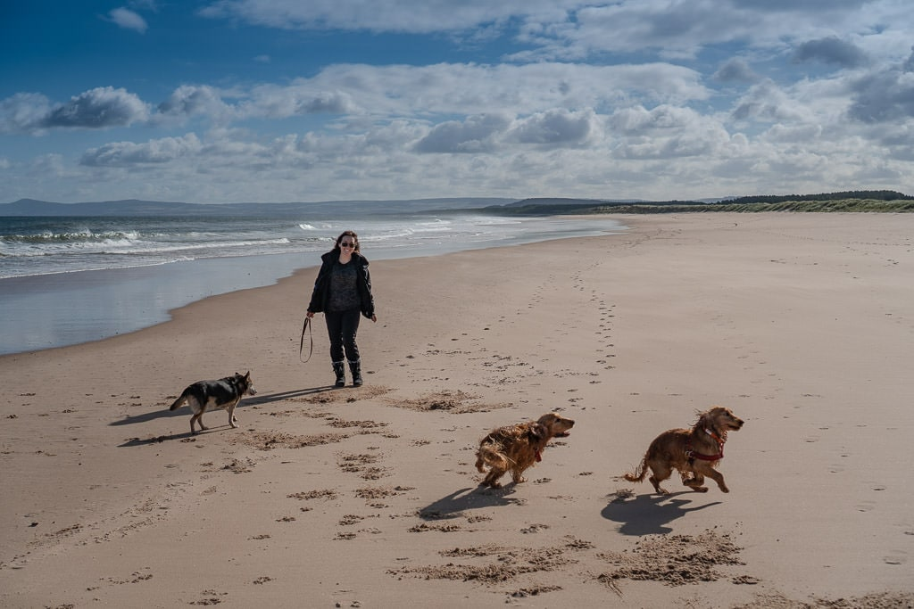 Dogs running on the beach in Scotland that we were house and pet sitting