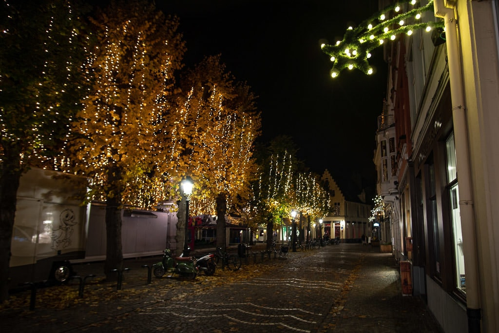 autumn trees with christmas lights and sidewalk in bruges belgium