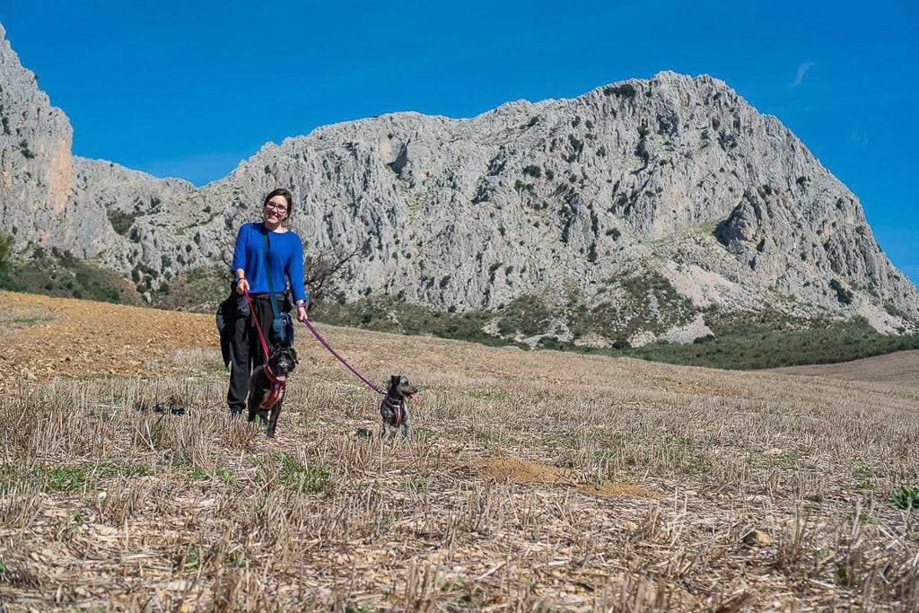 walking dogs through spain mountains while house sitting in europe