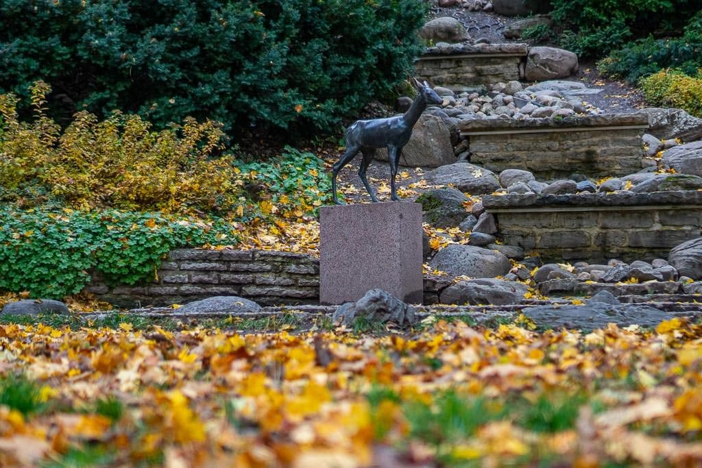 Deer statue in garden with autumn leaves