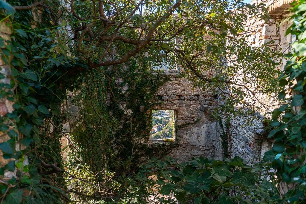 One of the structures still standing with many vines and trees overtaking it.