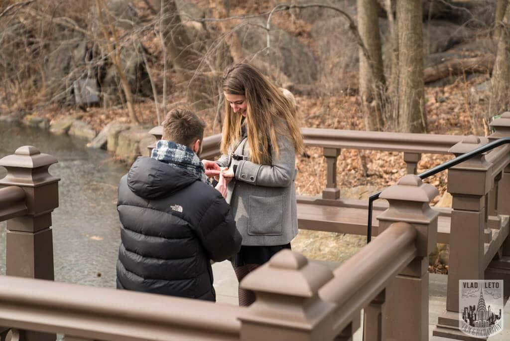Photo 3 Central Park proposal by Bow Bridge. | VladLeto