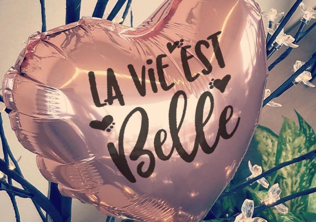 Bouquet de Ballon Blog La vie est belle