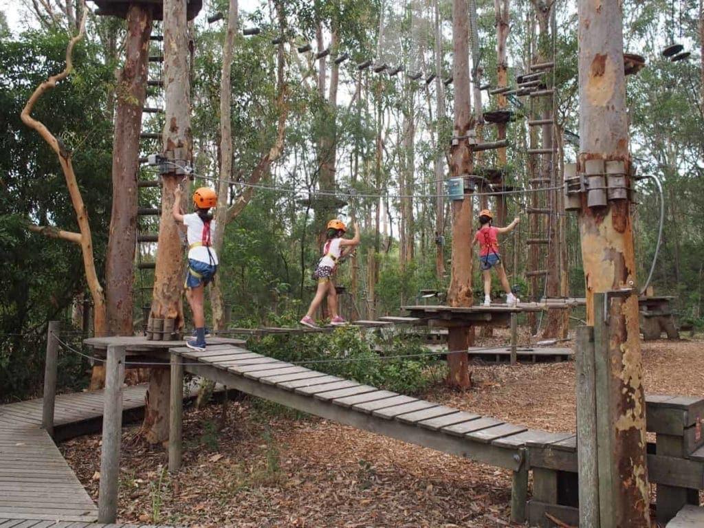 TreeTops Newcastle Adventure Park Kids
