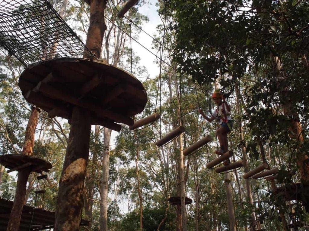 TreeTops Adventure Park Kids