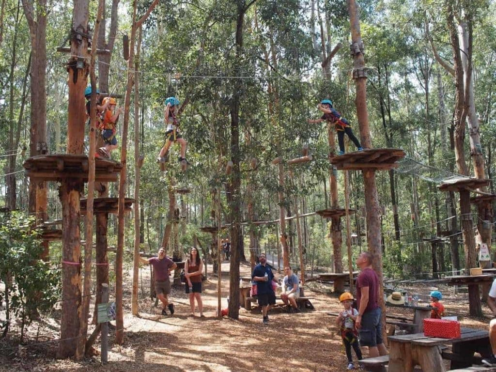 TreeTops Adventure Park Kids Newcastle