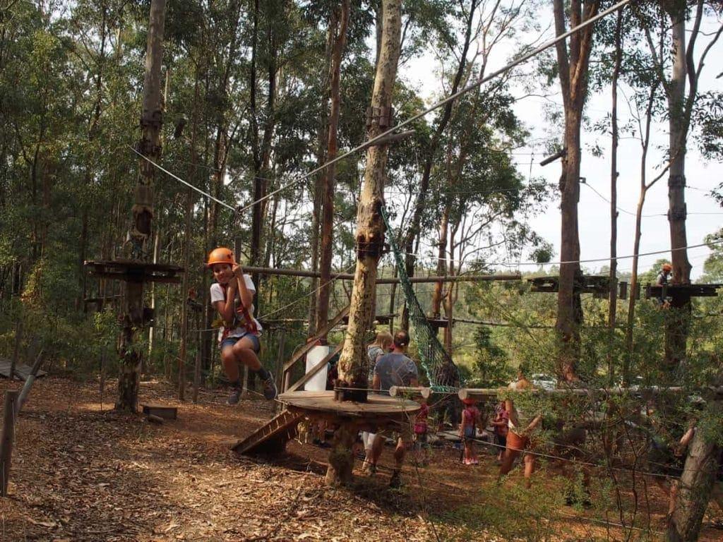 tree top adventure newcastle