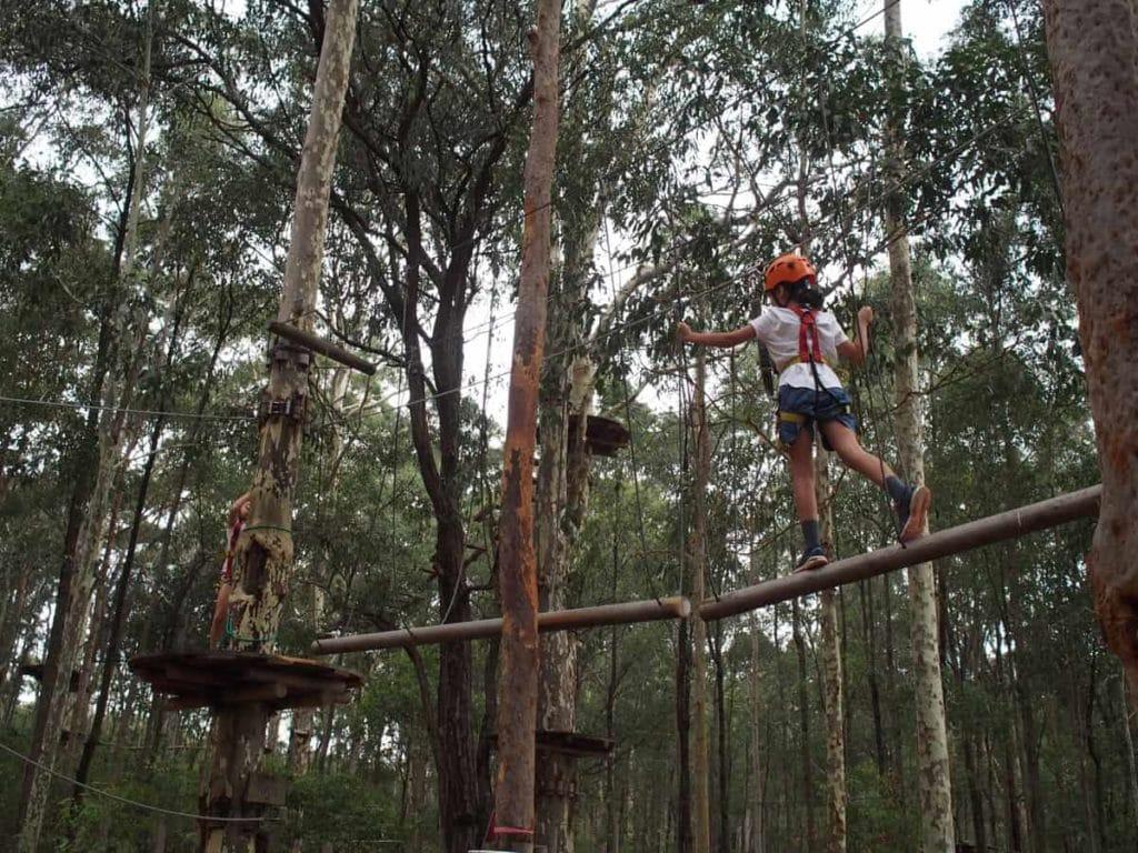 TreeTops Adventure Park Kids Climbing