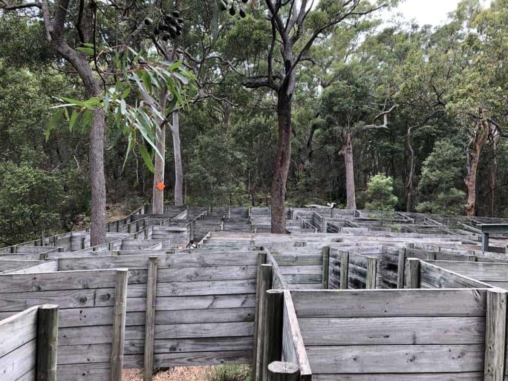 Toboggan Hill Park Giant Maze