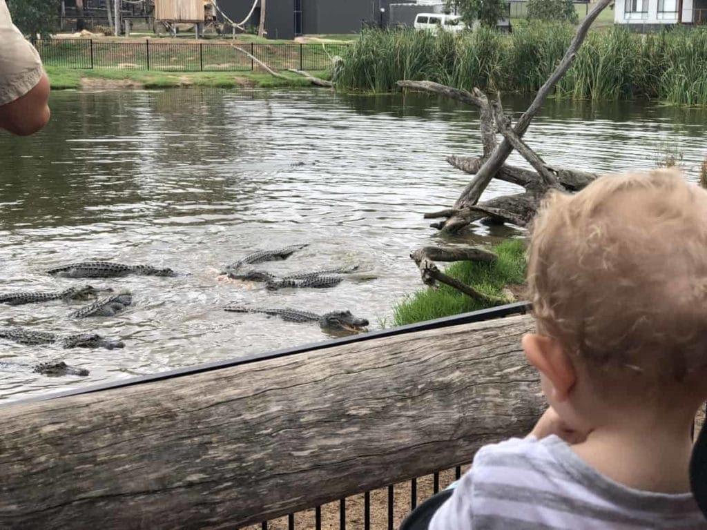 Hunter Valley Zoo kids