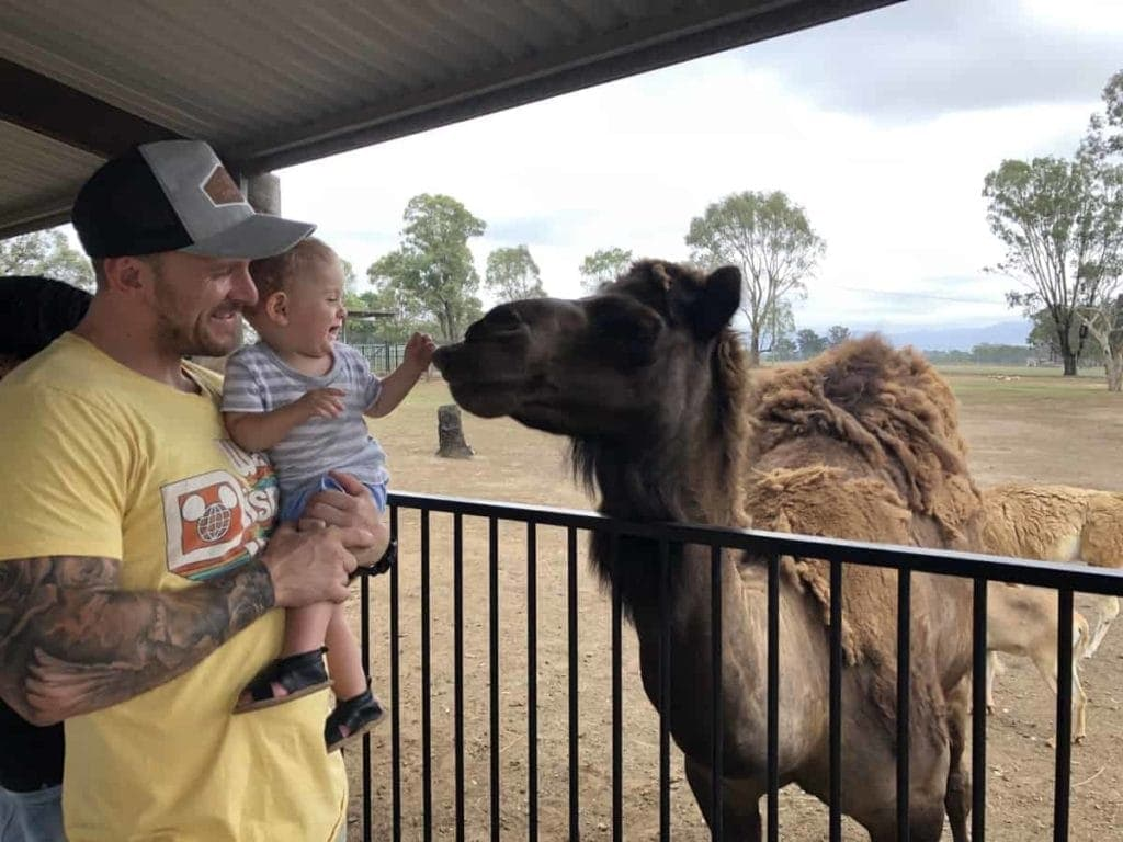 Hunter Valley Zoo family day out