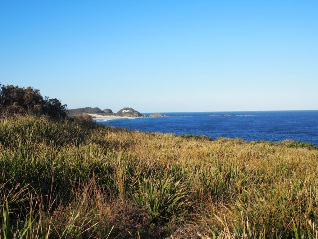 Treachery Beach Headland Walk Seal Rocks