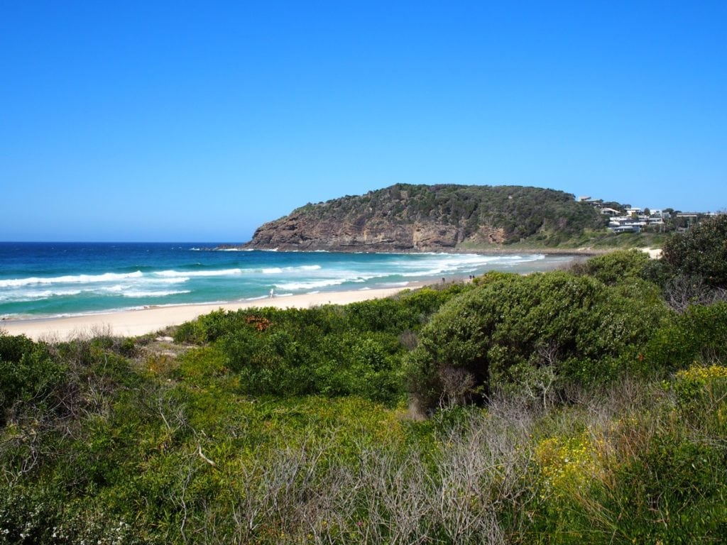 Number One Beach Seal Rocks