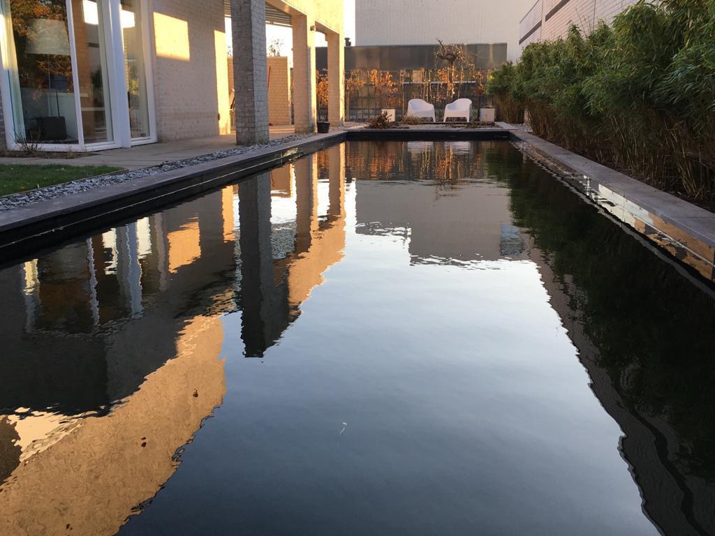 zwemvijver Udenhout