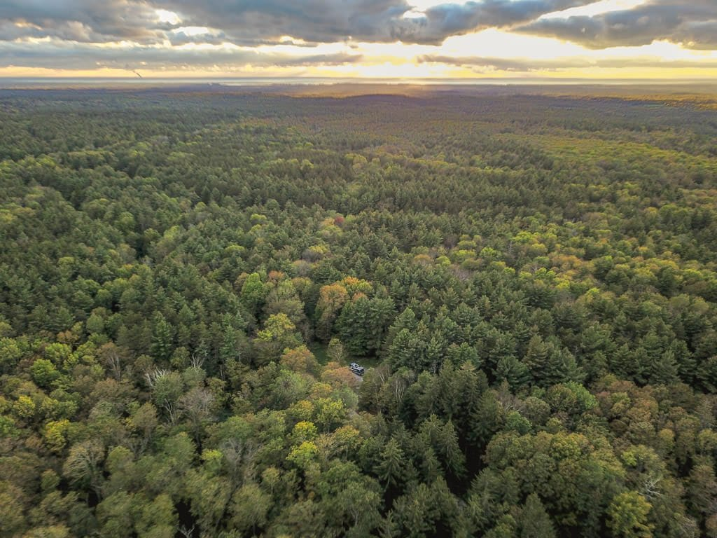 Drone shot of our RV sitting in the middle of the woods surrounded by trees for miles while boondocking near the Adirondacks.