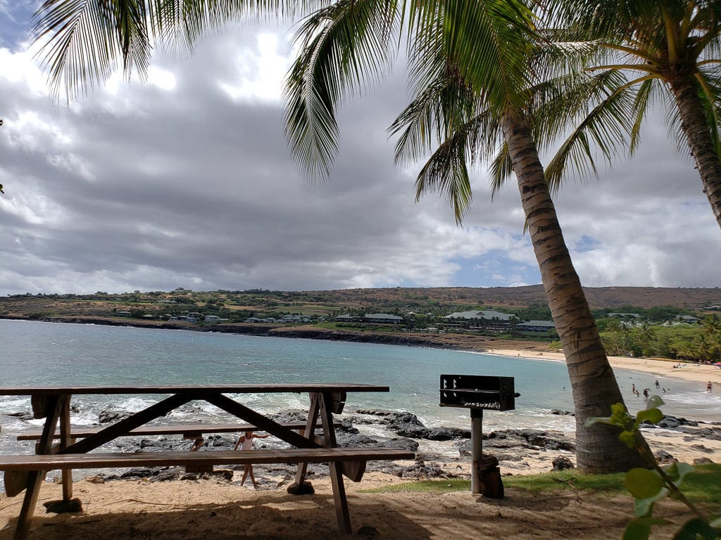 picnic table and palm trees with beach views on lanai