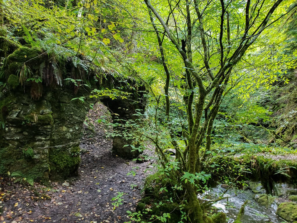 Old structure of a possible bridge at Reelig Glen