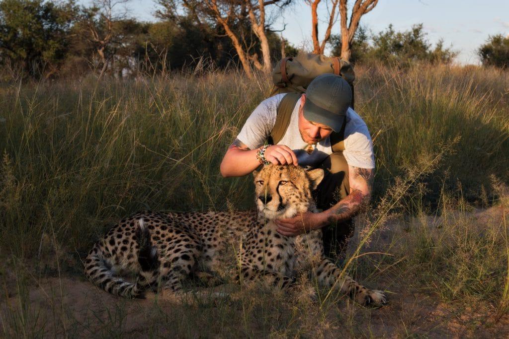 Sebastian Hilpert pflegt Gepard in Namibia