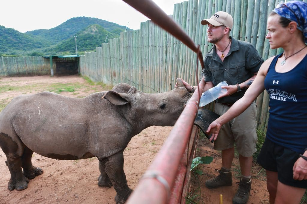 Care for Wild - Rhino Sanctuary