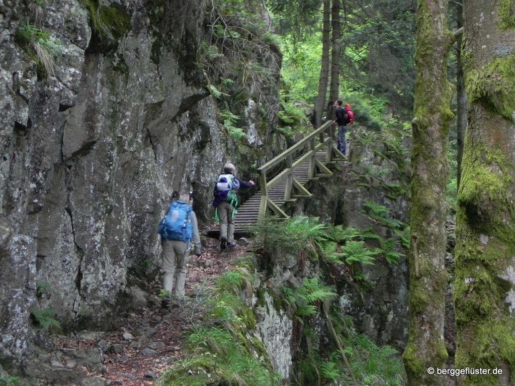 2 Tage im schönen Schwarzwald (1)
