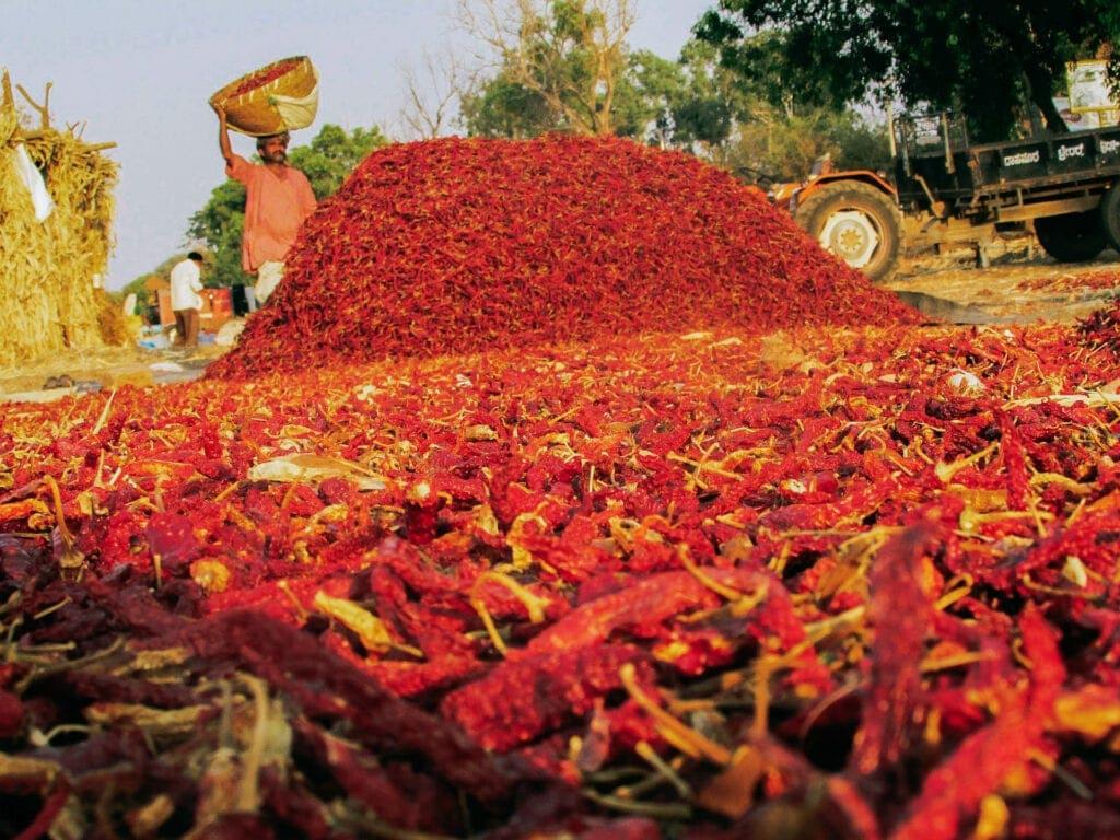 Asia's Biggest Spice Market - Khari Baoli