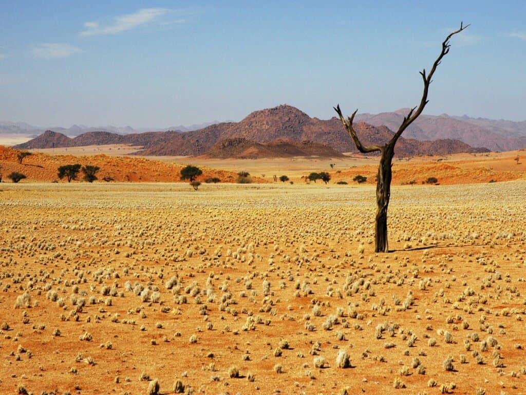The Namib desert, Namibia, Africa