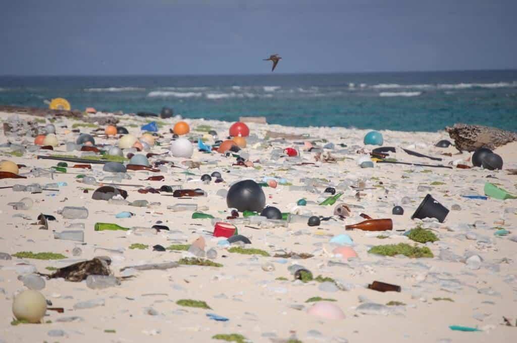 Beach full of plastic