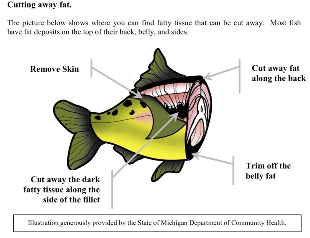 how to remove PCBs from fish