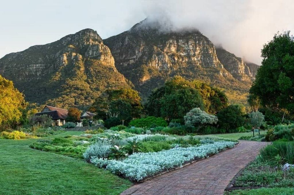 hike from Kirstenbosch Gardens up Table Mountain