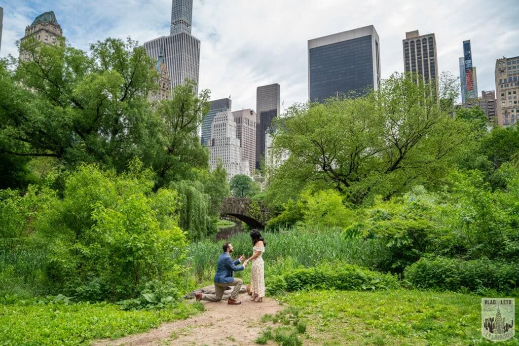 Proposal ideas in NYC