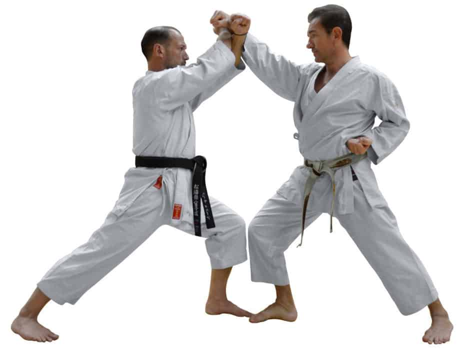 Two karate guys are demonstrating some skills in their discipline