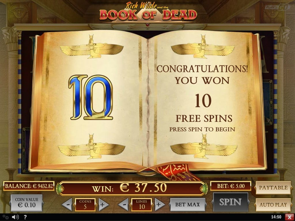 book of dead freespins screenshot video slot play'nGo