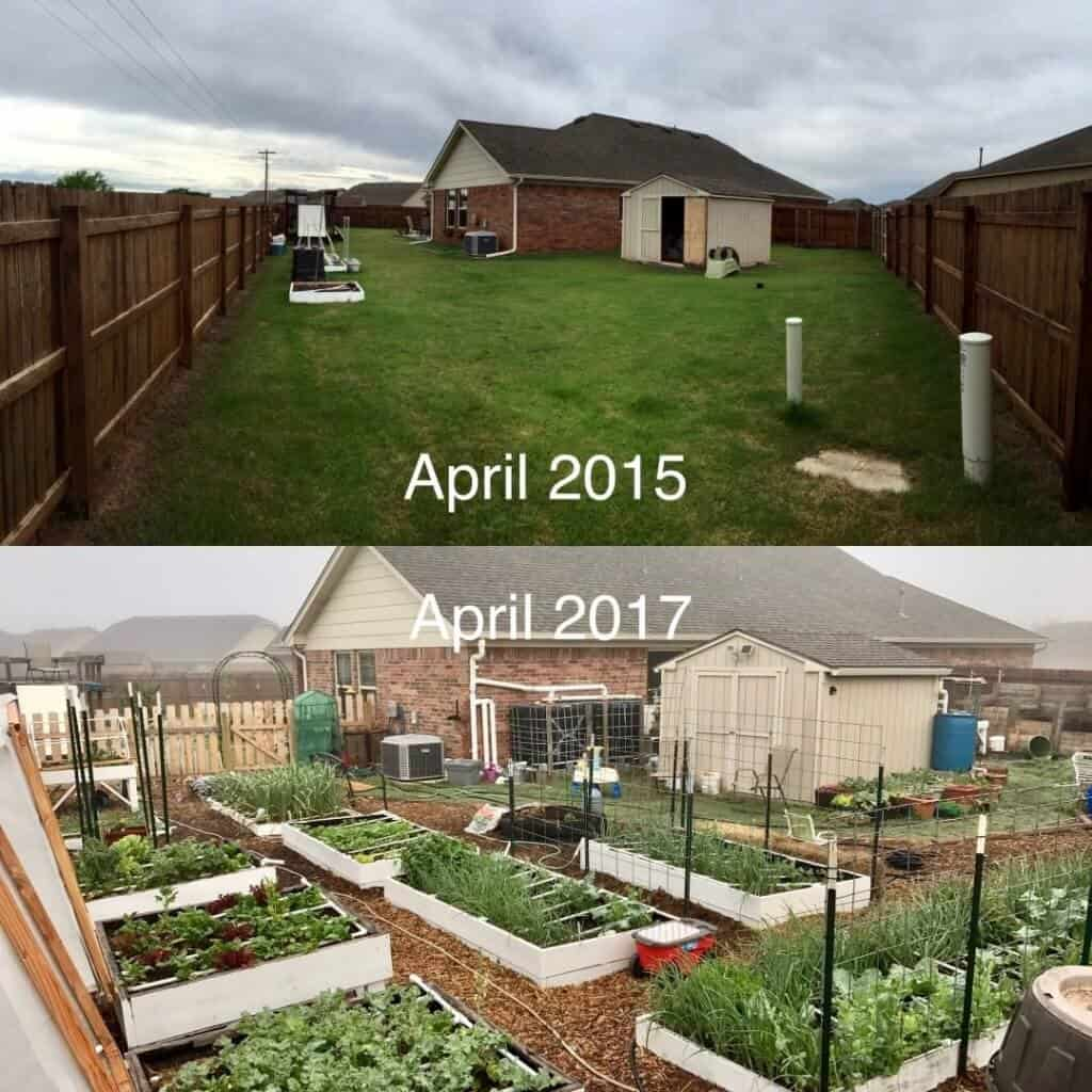 Garden before and after