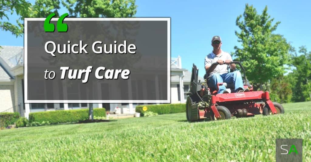 turf-care-guide-lawn-care-basics