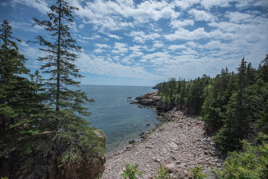 Coastal view in an opening from the wooded trail